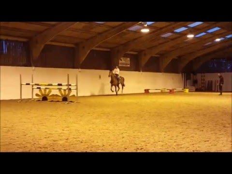Diaz SJ Training - 21-04-16