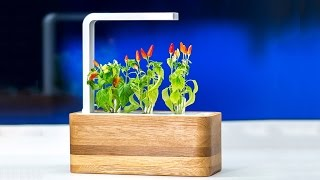 5 Awesome Gardening Gadgets You MUST HAVE!