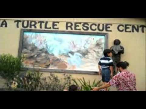 South Padre Island, Texas (1) travel destination