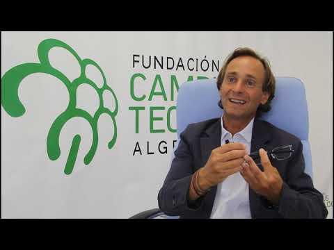 Celebrar el futuro hecho presente: Arranca el PDD de la Fundación Campus Tecnológico de Algeciras