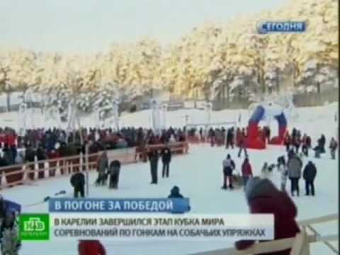 Новости спорта. Санкт-Петербург