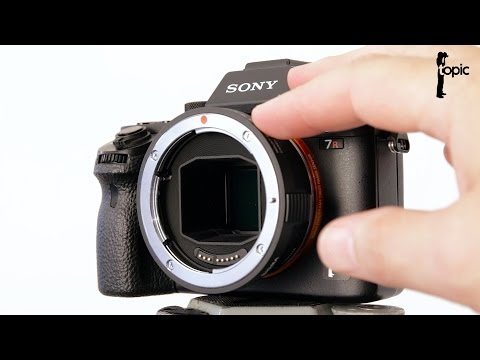 Testing AF modes on the A7 series with the Sigma MC-11 EF to E mount converter