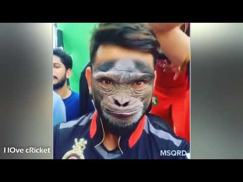 Virat Kohli Funny Moments In Cricket Beckpage San Antonio Backpage