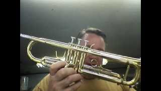 Crazy Trumpet Damage