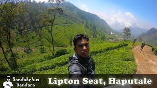 Haputale - Lipton Seat   Amazing Tea Estate