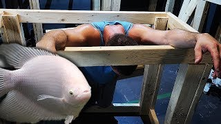 these-aquariums-are-exhausting