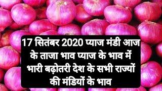 17 सितंबर 2020 प्याज मंडी ताजा भाव,प्याज भाव में भारी तेजी,onion bhav today payaj bhav,mandi bhav to