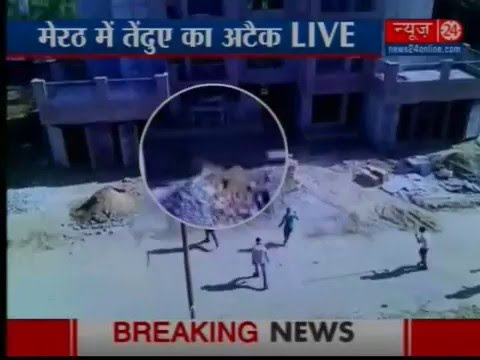 Caught on camera: Leopard attack outside army hospital in Meerut