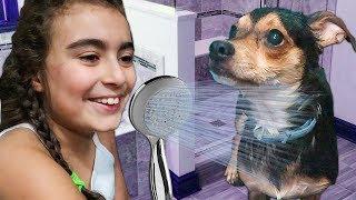 İLK DEFA KÖPEĞİMİ YIKIYORUM | Umikids Mira Köpek Bakımı