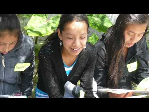 Women Work Together in Guatemala