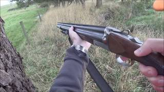 Driven Fox Hunt with Chiappa Triple Crown 20g and Beagles Victoria 22/03/2020