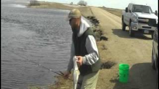 Shore Fishing Walleyes