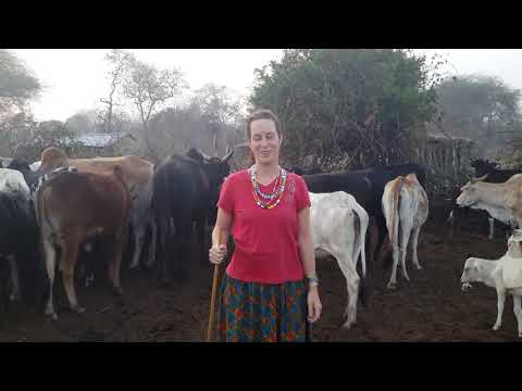 Stephanie and the Masai - an African love story.