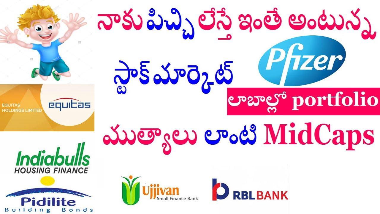 Stock market కి పిచ్చి లేచిందా ??  Pfizer,Equitas,Ibull Housing,ujjivan Small,RBL  Nifty,Bank Nifty.