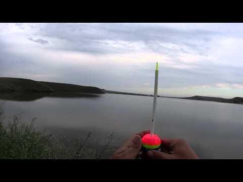 Поверхностный монтаж для ловли толстолоба(Дневник рыболова)