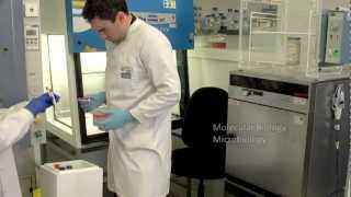 Environmental Test Chambers - their value to industry