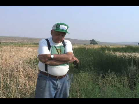 Phil Pister: Rescuing The Owens Pupfish At Fish Slough, Fish In A Bucket Story