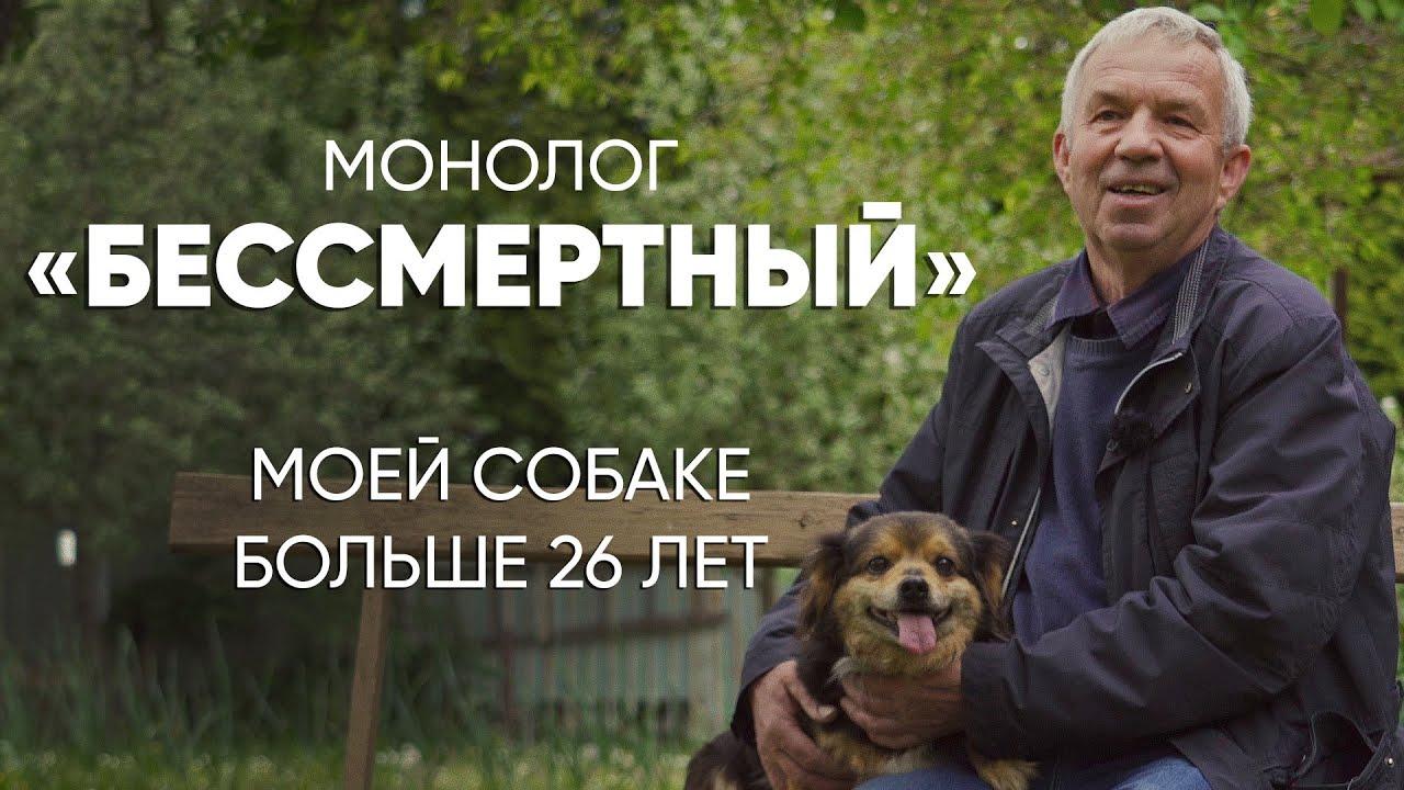 Это почти мировой рекорд: #монолог хозяина 26-летней собаки