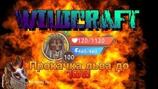 Wildcraft  ПРОКАЧКА ЛЬВА ДО 100 УРОВНЯ