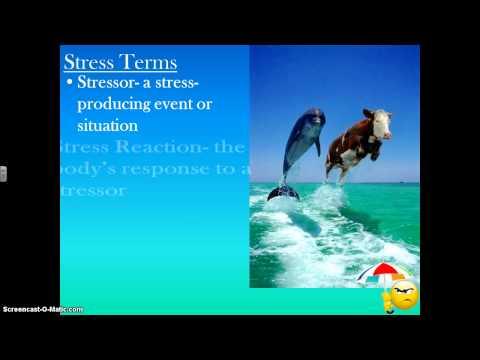 Stress and Conflict Part 1