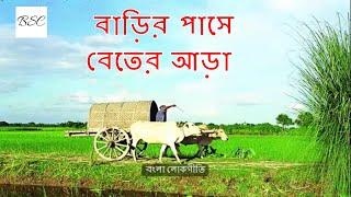 বাড়ির পাসে বেতের আড়া - জনপ্রিয় লোকগীতি (Barir Pashe Beter Ara - Popular Folk Song)