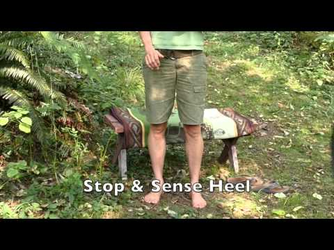 BareFoot Walking Lesson #1: Flexibility & Stability