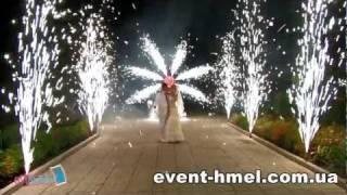 Организация и проведение свадьбы. Бизнес Житомира