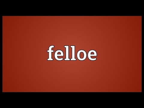 Header of felloe