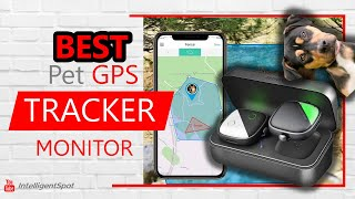 PetFon Pet GPS Tracker, Real-Time Tracking Collar Device For Dogs And Pets Activity Monitor