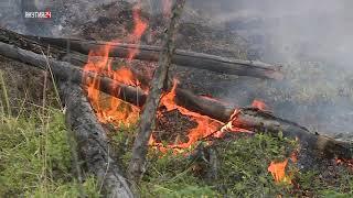 Более 300 человек задействованы в тушении 16 лесных пожаров в Якутии