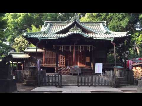Walking around Yoyogi Hachiman shrine in Tokyo, Japan.  Part 1/3