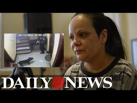Witness describes moment NYPD cop shot dog