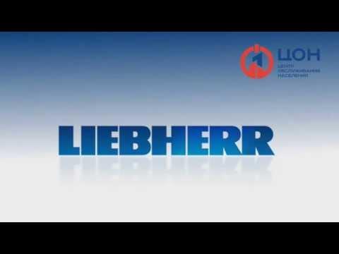 Liebherr CNesf 4003 21E  Замена импульсного клапана