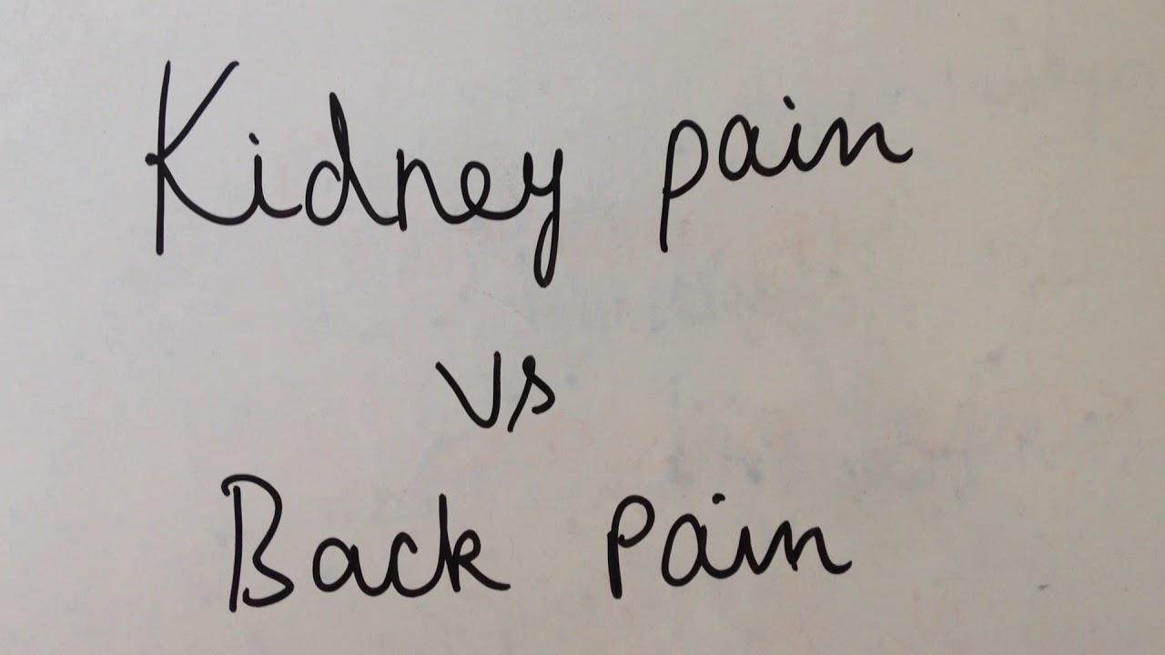 Kidney Pain Vs Back Pain Youtube