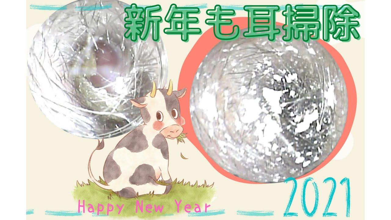 耳掃除動画vol.105「新年も耳掃除」