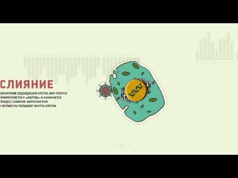 ВИЧ — Медицинская википедия
