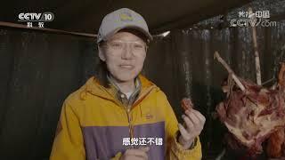 《地理·中国》 20200116 格聂之眼| CCTV科教
