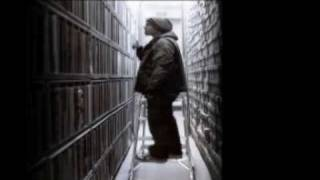 Dj Shadow - Building Steam With A Grain Of Salt (NiT GriT Mix)