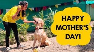 Shades of Motherhood: Celebrating Mothers' Day at RESQ!
