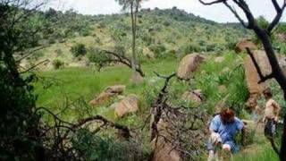 FARM FOR SALE IN MPUMALANGA SOUTH AFRICA