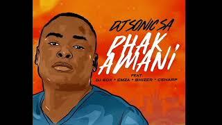 DJ SONICSA ft DJ SOX EMZA BHIZER amp C_SHARP - PHAKAMANIpromo