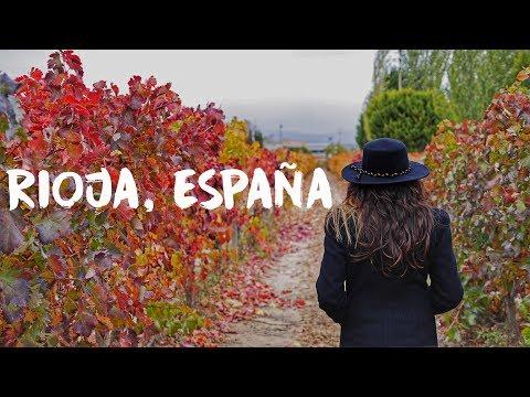 rioja,-espaÑa- -tierra-de-vinos