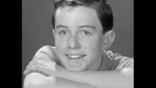 Jerry Mathers - Don