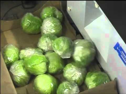 Audion Elektro (Swissvac) Veggiepack - Vegetable packaging machine