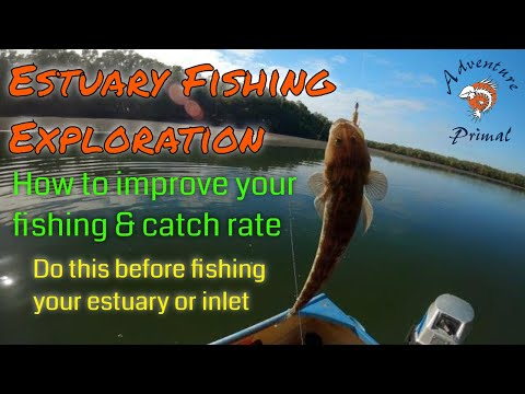 Estuary Fishing Exploration - How To Improve Your Fishing And Catch Rate