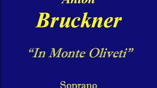 Soprano Bruckner In Monte Olivet