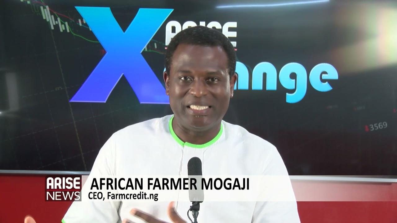 Download NIGERIA'S MESSY FARMERS' LOANS - AFRICAN FARMER MOGAJI
