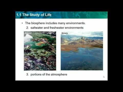 biology-ch-1.1---study-of-life