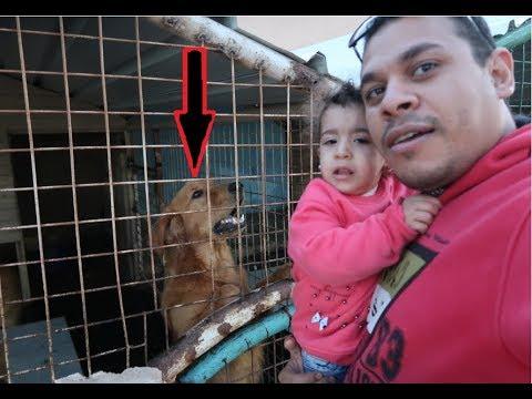 #روحنا بيت الكلاب و مريم خافت !!