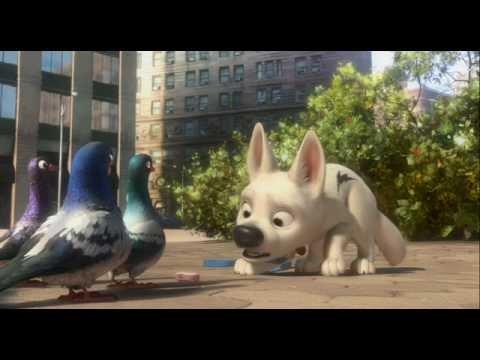 Bolt Pigeons Clip Youtube